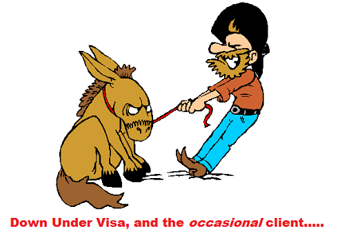 How to avoid a visa refusal by using professional help and by following professional advice
